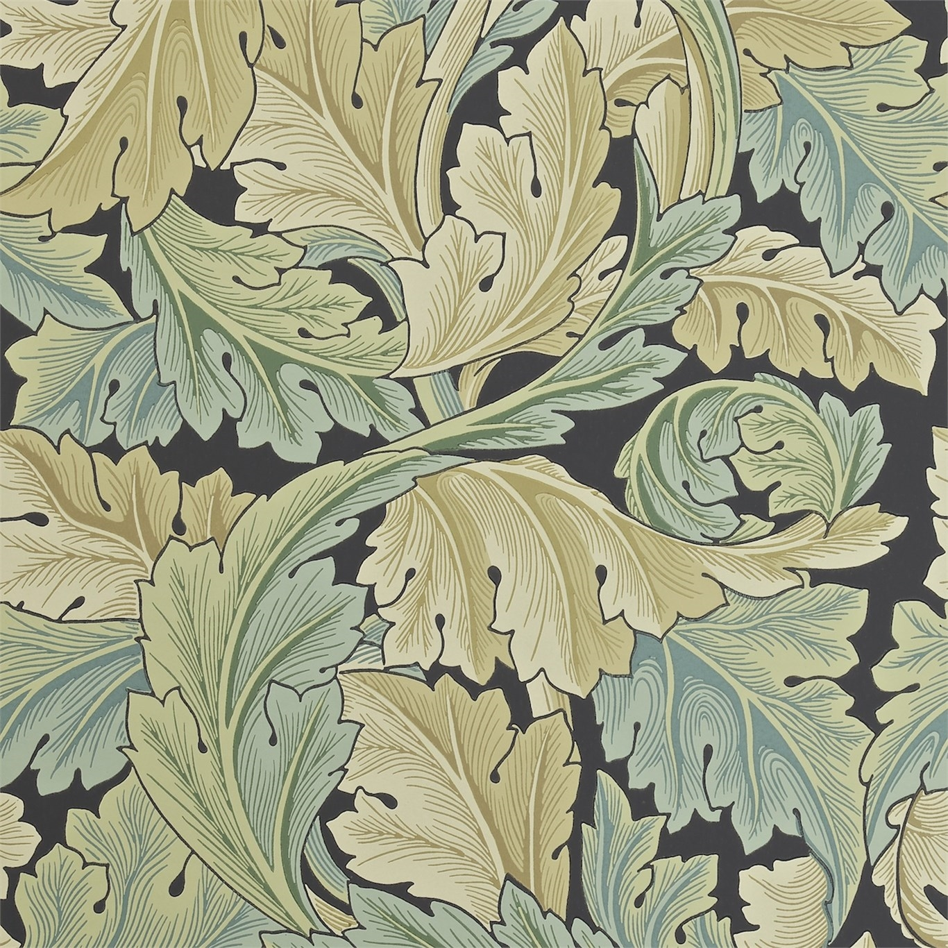 Picture of Acanthus - 212550