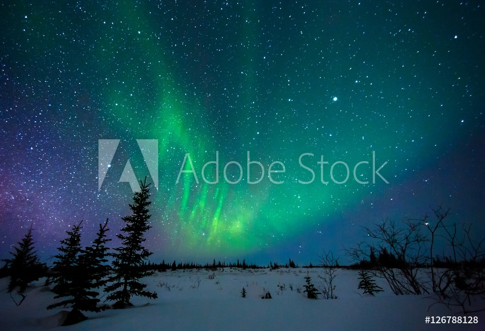 Picture of Aurora Borealis